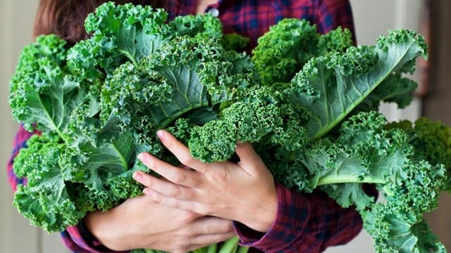 Kale, Sayur Anti Kanker - K24Klik