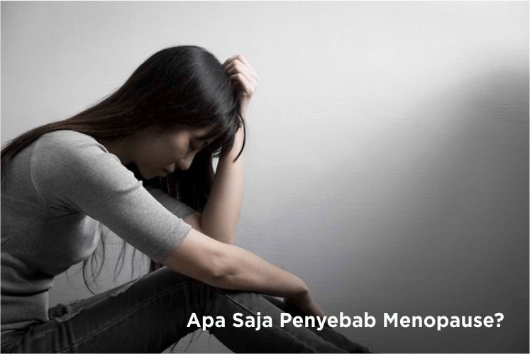 Penyebab Menopause