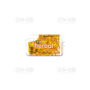 FROZZ HERBAL CHRYSANT MINT